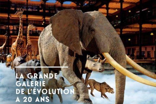 affiche de la grande galerie Grande galerie de lEvolution   gratuit pour les moins de 26 ans...